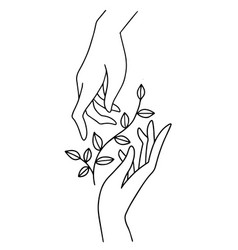 two hands holding floral plant with leaves boho vector image