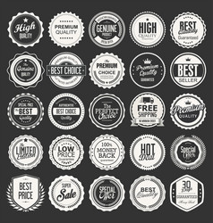 retro vintage badges collection vector image