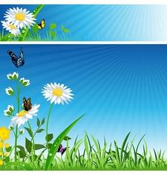 Flower Banner vector image vector image