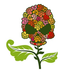 Floral skull on stem Skull with roses vector image vector image