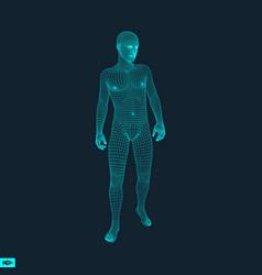 3d model of man human polygon body vector