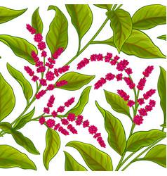 Amaranth pattern vector
