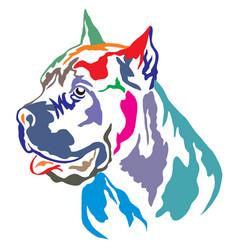 Colorful decorative portrait of cane corso vector