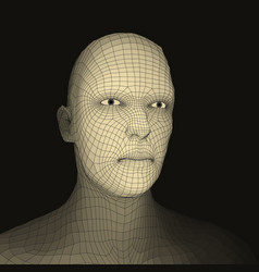 head of the person from a 3d grid face scanning vector image