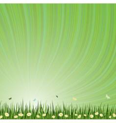 summar background vector image