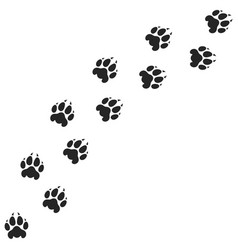 Tiger paw print silhouette vector