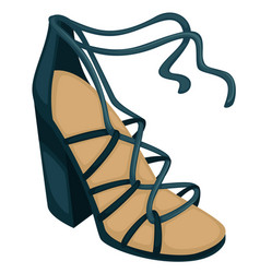 wedges with laces trendy women footwear vector image