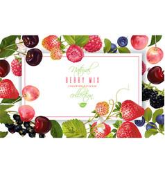 berry horizontal banner vector image