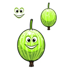 Happy smiling fresh chinese gooseberry vector