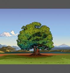 oak tree vector image