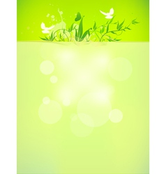 bio concept design eco friendly for summer floral vector image vector image