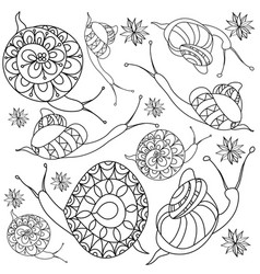 hand-drawn snail with flowers vector image vector image