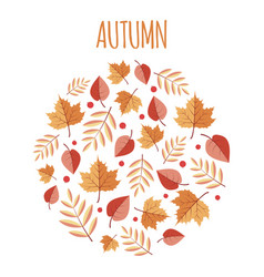 autumn leaves circle background vector image