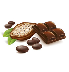 Cacao beans with chocolate table vector