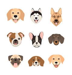 Flat style dog head icons cartoon dogs faces set vector