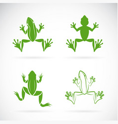 group frogs design on white background vector image