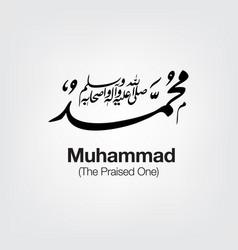 Muhammad vector
