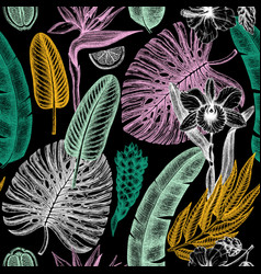 Tropical flora seamless pattern tropical plants vector