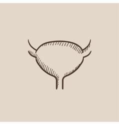 Urinary bladder sketch icon vector image
