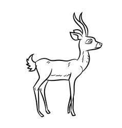 antelope cartoon - line drawn vector image vector image