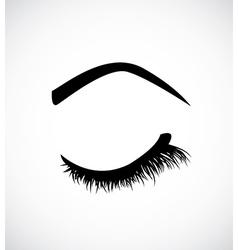Eyelashes vector image vector image