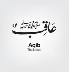 Aqib vector