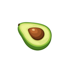 avocado icon isolated vector image