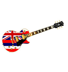 Hawaii state flag guitar vector