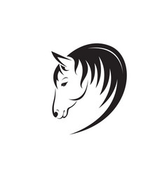 horse head design isolated on white background vector image