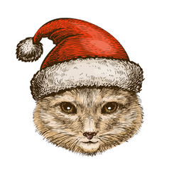 kitty cat in santa claus hat christmas vector image