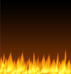 Realistic fire flames background vector