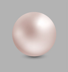 realistic pearl on gray background pink 3d sphere vector image