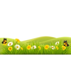 Spring background with grass flowers and vector image