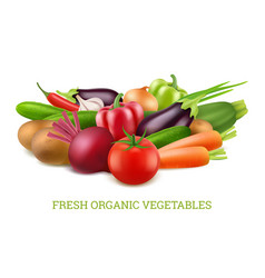 vegetables collection 3d organic vegan healthy vector image