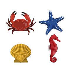 drawing of crab star seahorse shell vector image vector image