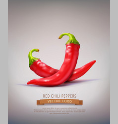 two red hot chilli peppers isolated vector image vector image