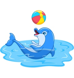 Playful Dolphin vector image