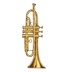 Brass Trumpet Isolated on a White vector image