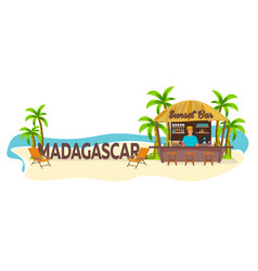 madagascar travel palm drink summer lounge vector image