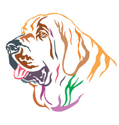 Colorful decorative portrait of spanish mastiff vector
