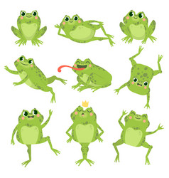 cute frogs green funny frogs in various poses vector image