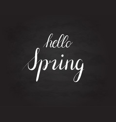 hello spring grunge vintage lettering on a vector image