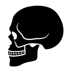 Human skull symbol - side view vector