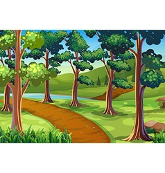 Scene with hiking trail in woods vector