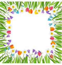 spring tulip bluebell narcissus flowers background vector image