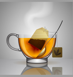transparent glass cup with tea bag spoon and hot vector image