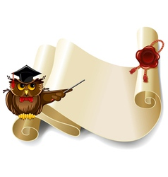 Owl and manuscript vector image vector image