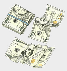 detailed currency banknotes or american franklin vector image