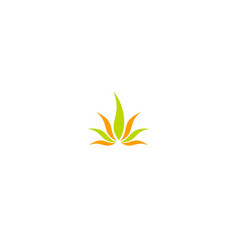 aloe vera colored logo vector image