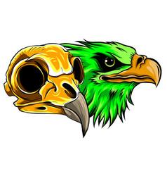 Bald eagle or hawk head mascot graphic vector